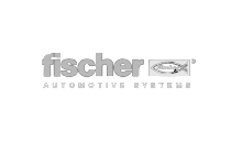 Fischer Automotive Systems